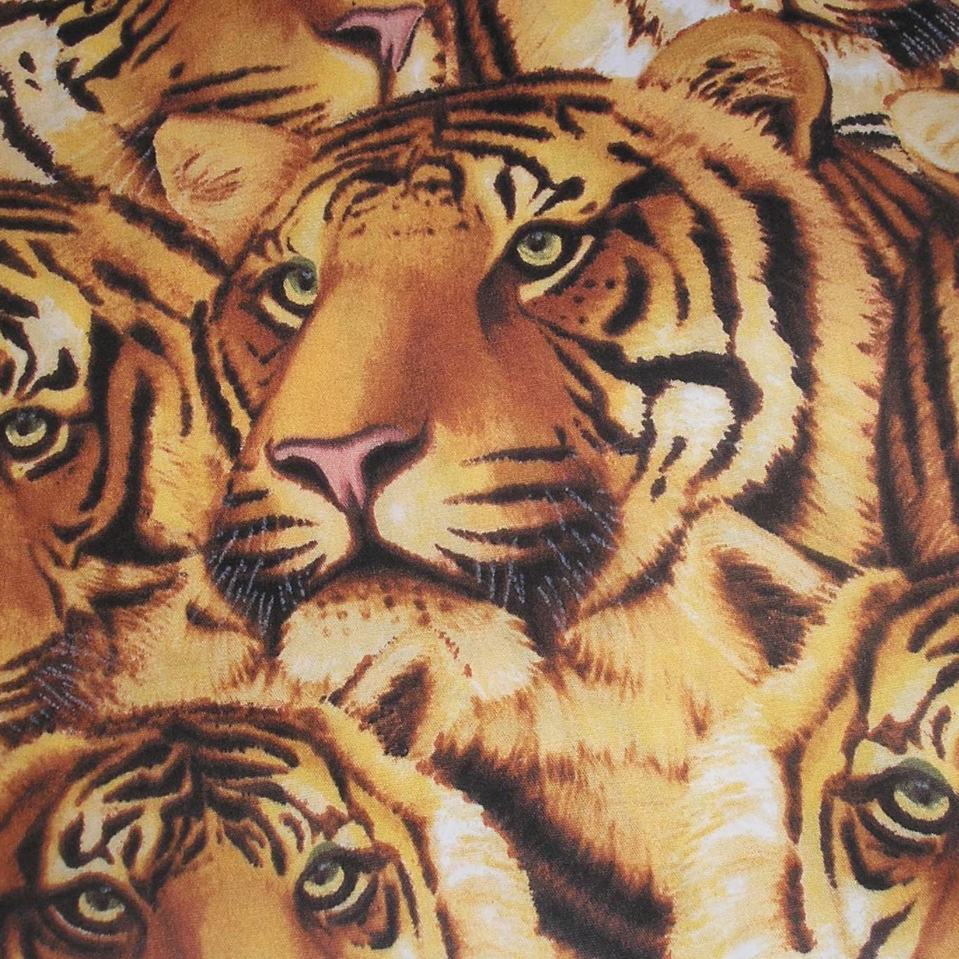 tiger faces